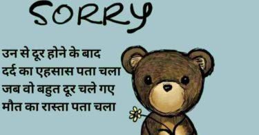 Sorry shayari hindi